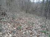 Lot 12 Coyote Hollow Road - Photo 8