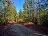 TBD Erwin Hill Road - Photo 5