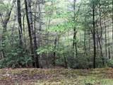 0 Pine Lake Ridge - Photo 3