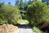 99999 Elkins Branch Road - Photo 6