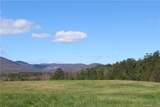 24.17 acres Walnut Falls Lane - Photo 12