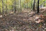 24.17 acres Walnut Falls Lane - Photo 44