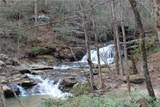24.17 acres Walnut Falls Lane - Photo 45