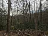 Lot 7 Pisgah Forest Drive - Photo 1
