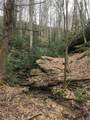 Lot 7 Pisgah Forest Drive - Photo 13