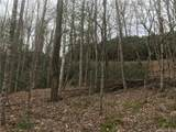 Lot 7 Pisgah Forest Drive - Photo 4