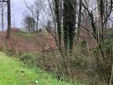 0 Kenwood Drive - Photo 3