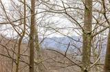 Lot 9 Heritage Ridge Loop - Photo 4