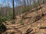 27 Pathfinder Trail - Photo 4