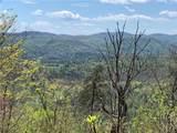 TBD Elk Mountain Lane - Photo 1