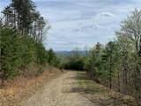 TBD Elk Mountain Lane - Photo 3