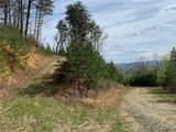 TBD Elk Mountain Lane - Photo 4