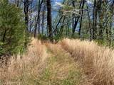 TBD Elk Mountain Lane - Photo 5