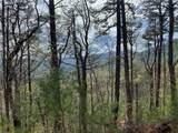 TBD Elk Mountain Lane - Photo 8