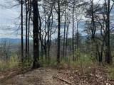 TBD Elk Mountain Lane - Photo 10