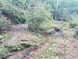 18.54 Acres Scout Camp Road - Photo 43