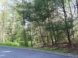 LOT 2 Berry Hill Drive - Photo 4
