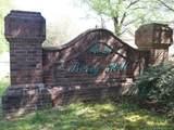 LOT 2 Berry Hill Drive - Photo 7