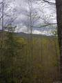 Lt 9 Booshway Mountain Road - Photo 1