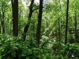 305 Meadowlark Drive - Photo 48