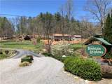 TDB Crooked Creek Road - Photo 1