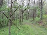 21+ acres Cherrywood Lane - Photo 30