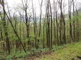 20 acres MOL Cherrywood Lane - Photo 31