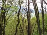 20 acres MOL Cherrywood Lane - Photo 40
