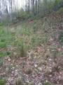 Lot 18 Trout Lily Trail - Photo 13
