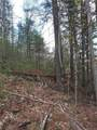 Lot 18 Trout Lily Trail - Photo 10