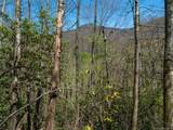 00 Ogles Gap Road - Photo 2