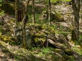 00 Ogles Gap Road - Photo 12