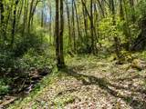 00 Ogles Gap Road - Photo 18
