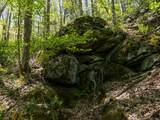 00 Ogles Gap Road - Photo 20