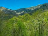 00 Ogles Gap Road - Photo 3