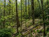 00 Ogles Gap Road - Photo 23