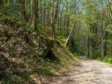 00 Ogles Gap Road - Photo 24