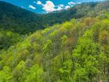 00 Ogles Gap Road - Photo 4