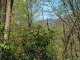 00 Ogles Gap Road - Photo 7