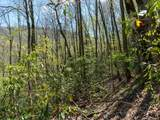 00 Ogles Gap Road - Photo 8