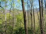 00 Ogles Gap Road - Photo 9