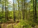Lot 91 Bear River Lodge Trail - Photo 2