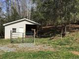 376 Paint Fork Road - Photo 18