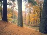 56 Audubon Drive - Photo 43
