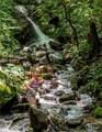 1221 Arborcrest Way - Photo 16