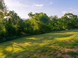 Lot 29 & 39 Pisgah Ridge Trail - Photo 8