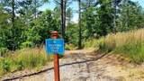 1375 Scenic Lane - Photo 17