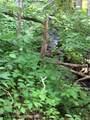 250 White Oak Way - Photo 20
