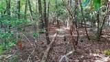 Fraser Fir Trail - Photo 12