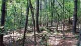 Fraser Fir Trail - Photo 13
